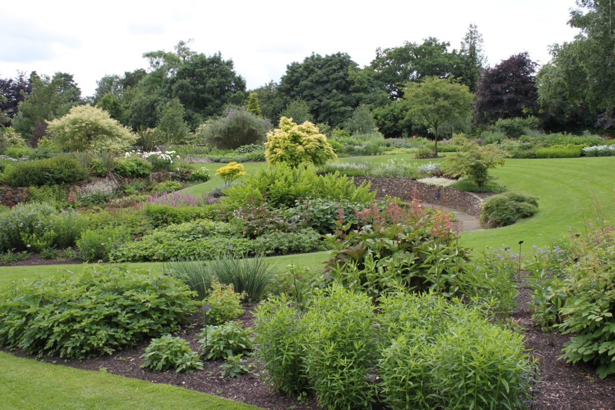 Bressingham - gardens that inspired my Garden for Wellbeing