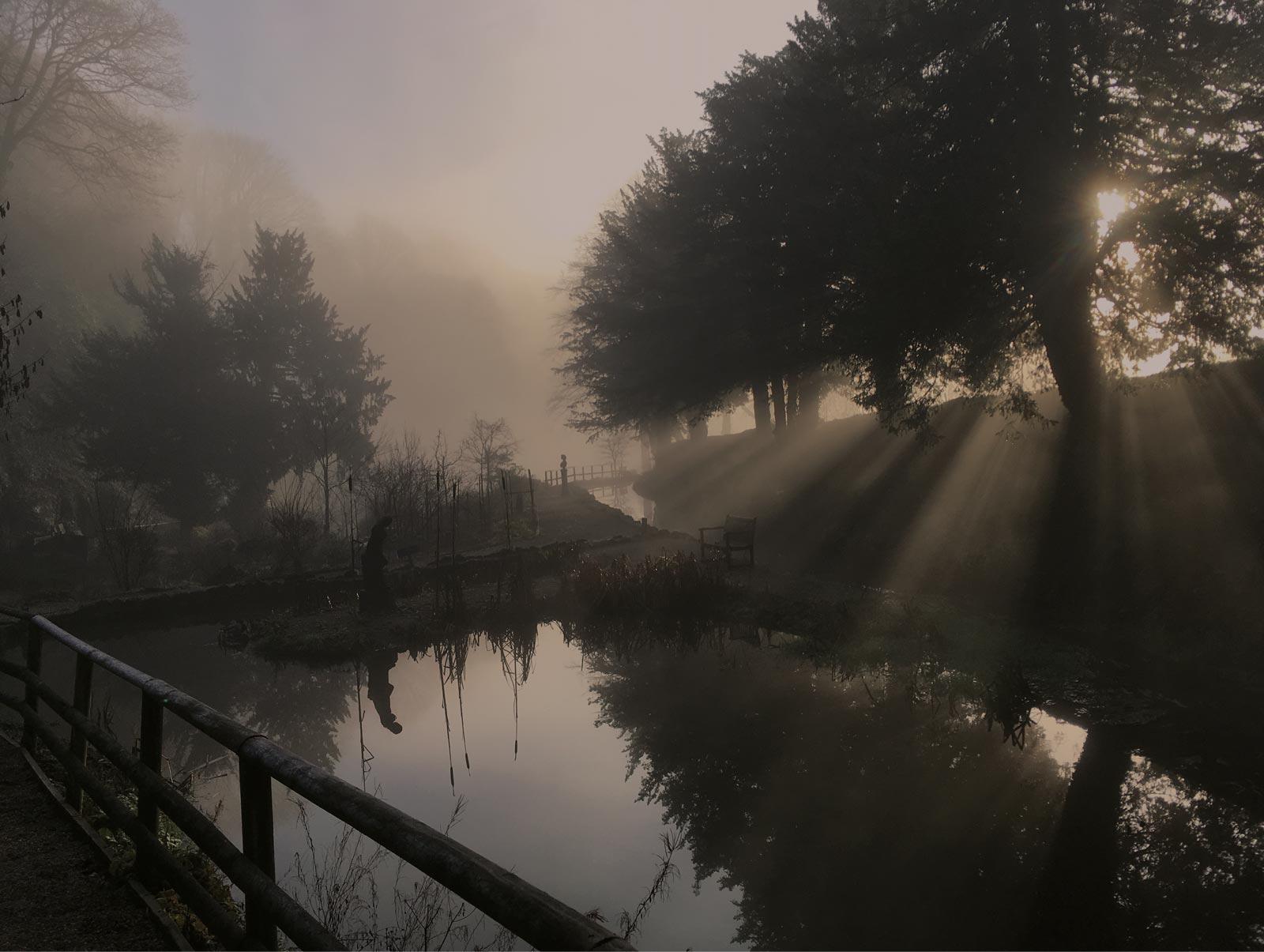 misty cascades gardens, Derbyshire