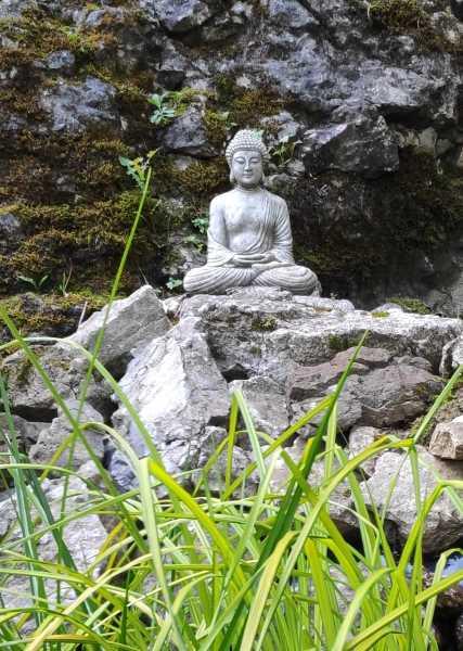Buddha statues in my garden for wellbeing at Cascades Gardens Derbyshire